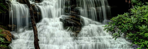 Friends of Ohiopyle Calendar Contest Winner