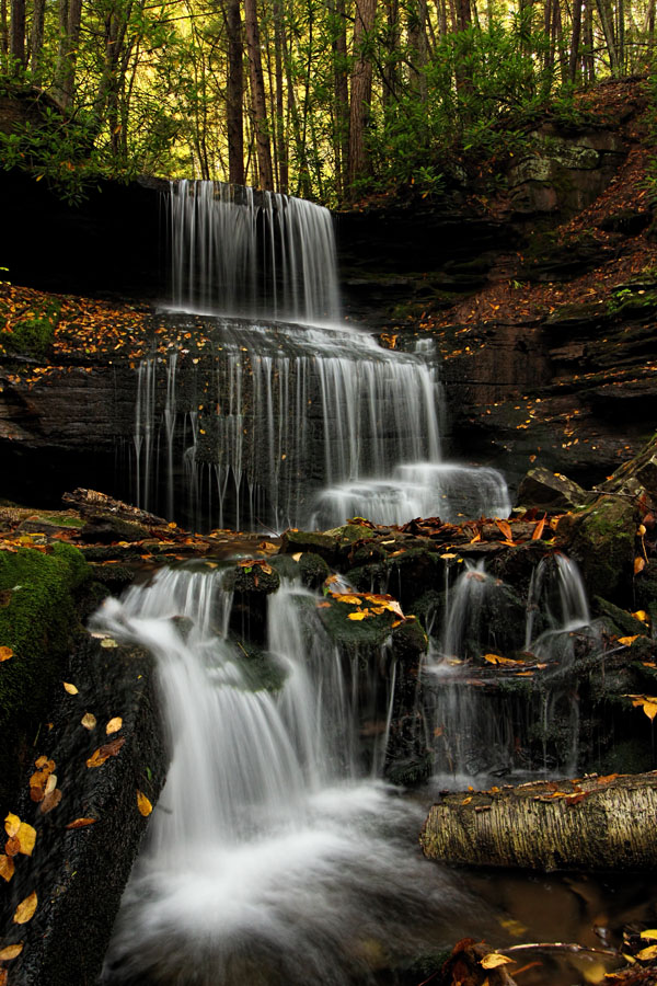 An autumn front view of Round Island Run Falls, Sproul State Forest, Clinton County, PA.