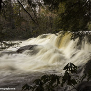 Spring Thaw at Ohiopyle State Park
