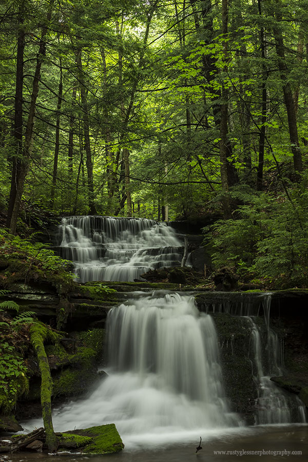 Unnamed waterfalls along Bear Run in the Pine Creek Gorge