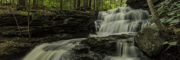 Visiting the Waterfalls along Pigeon Run in State Game Lands 13 – 7.2.2015