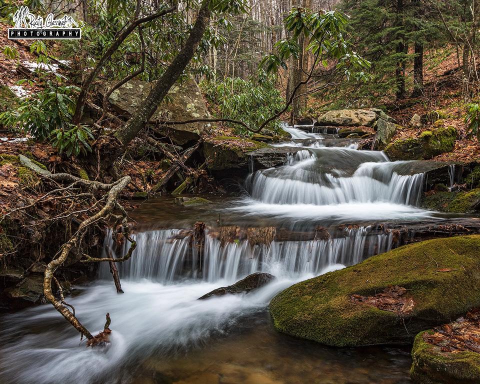 Cascades along the Gore Draft, Quehanna Wild Area, Cameron County, PA.