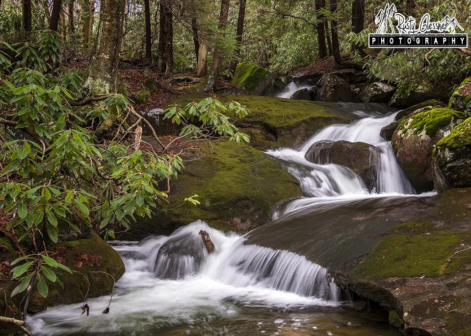 Cascades along Paige Run, Quehanna Wild Area, Elk County, PA.