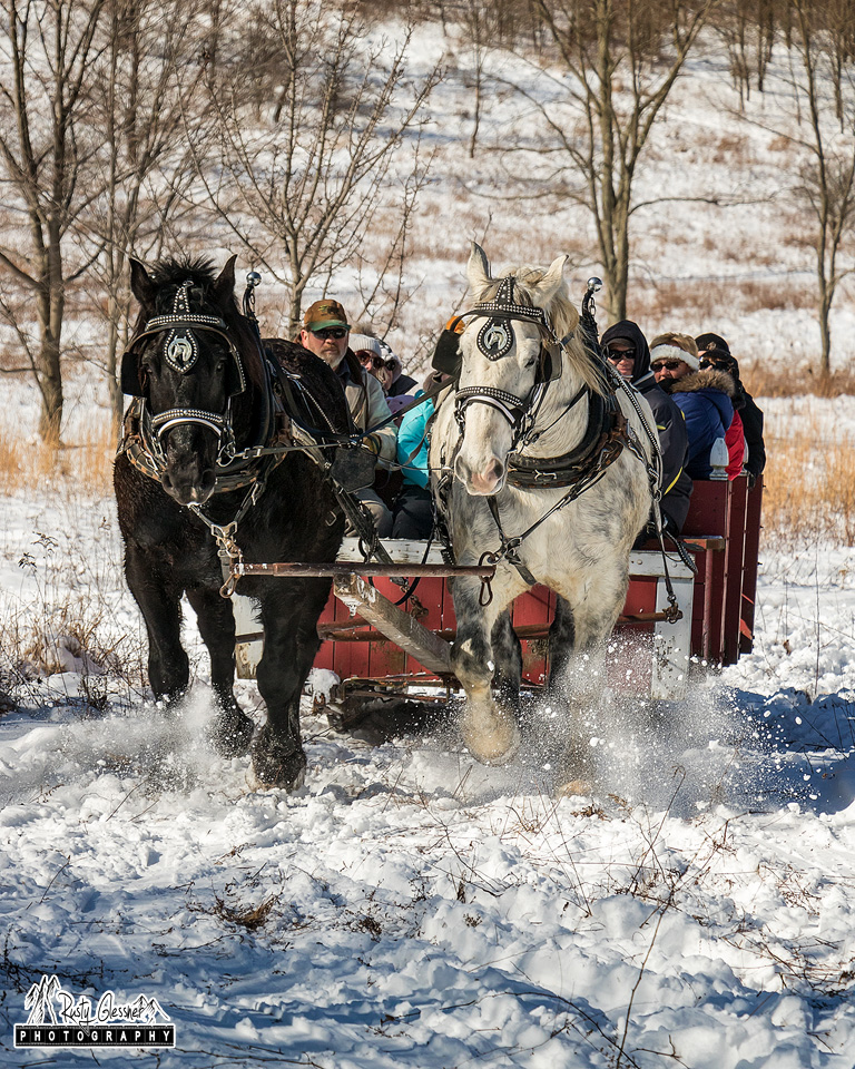 Sleigh riding at Ohiopyle State Park Winterfest 2017.