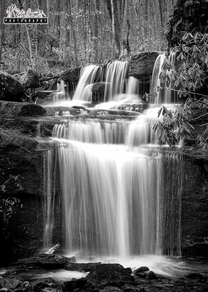 Fechter Run Falls, Ohiopyle State Park, Fayette County, PA - 3.21.2017