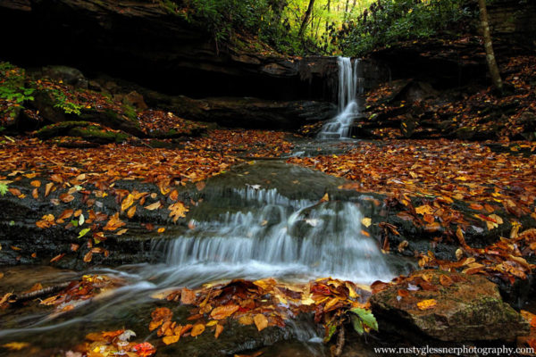 Fall foliage around the Cave Falls on Cole Run, Forbes State Forest, Somerset County, PA
