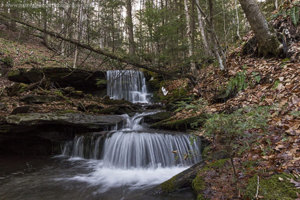 Bear Run Falls #2, upper and lower tiers, Colton Point State Park, Tioga County