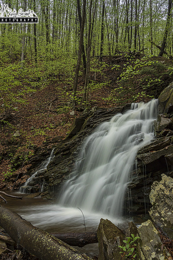 Dutters Run Falls #1, Loyalsock State Forest, Sullivan County, PA