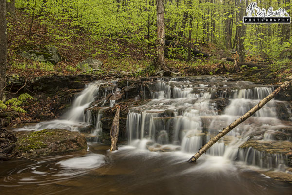 Dutters Run Falls #4, Loyalsock State Forest, Sullivan County, PA