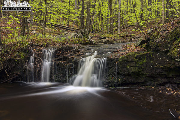 Dutters Run Falls #5, Loyalsock State Forest, Sullivan County, PA