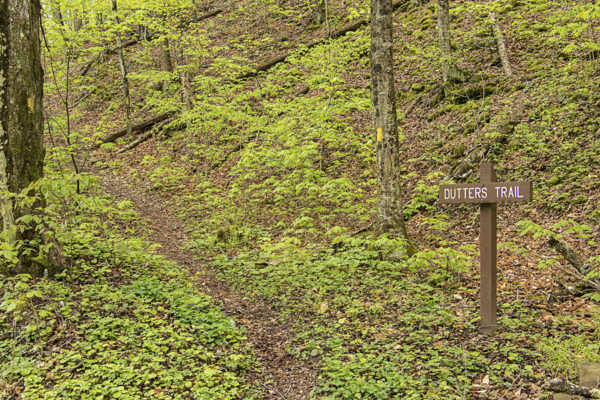 Dutters Trail, Loyalsock State Forest, Sullivan County, PA