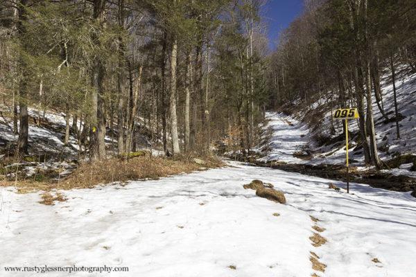 Jacoby Run Falls trail split.
