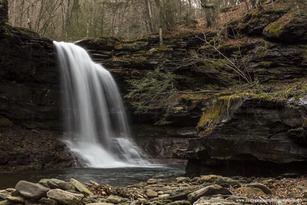 Lewis Falls (side view), Herberly Run, State Game Lands 13, Sullivan County, PA.