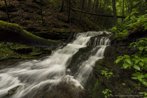 Small unnamed waterfall along Little Slate Run in the Pine Creek Gorge Natural Area