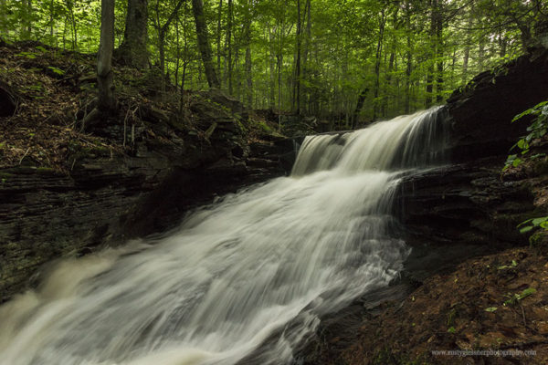 Unnamed waterfall along Pigeon Run, SGL 13, Sullivan County