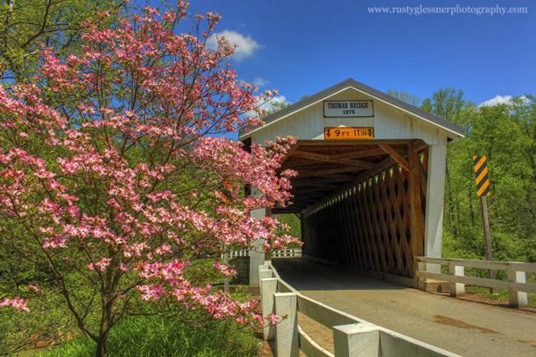 Thomas Covered Bridge, Indiana County, PA.